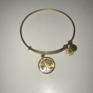 Alex and Ani Tree of Life